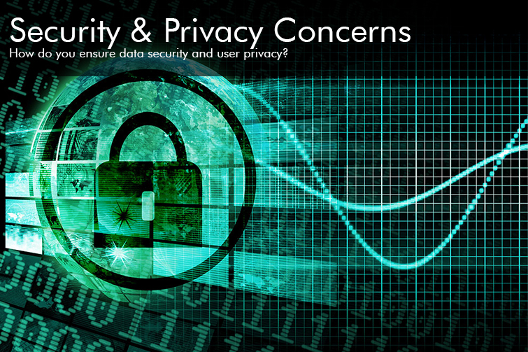 Viewpoint: Security and Privacy Concerns, Shen Milsom & Wilke